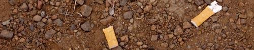 Cigarette_litter