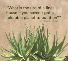 quote_finehouse_thoreau