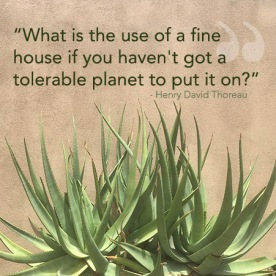 quote_finehouse_thoreau