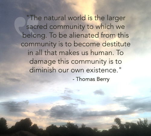 quote_thomasberry_diminished