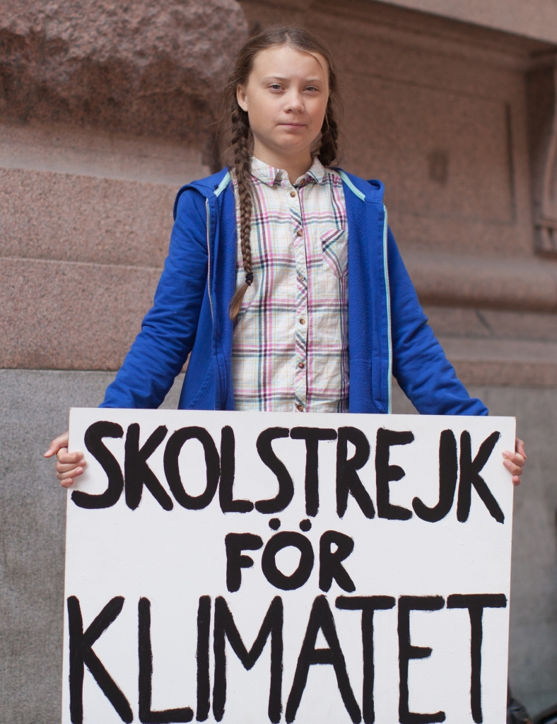 Greta Thunberg, Skolstrejk for Klimatet